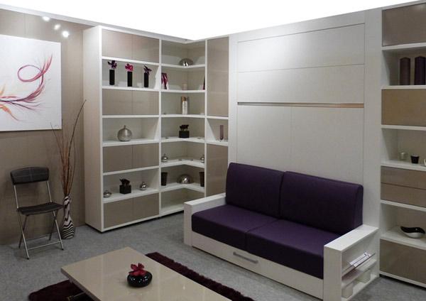Шкаф-кровать встроенная с диваном